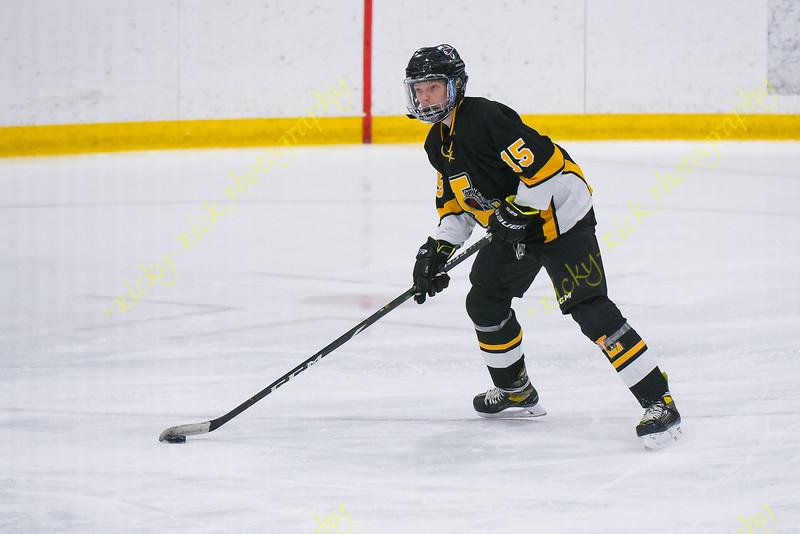 01/15/2021 - ice hockey - Lafayette vs Vianney