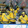 During the 2011 West Regional playoffs at Scottrade Center in St. Louis, MO.  The Michigan bench celebrates when their teammates score a goal to tie the game at 2 to 2.  Michigan defeated Nebraska 3 to 2 with a goal in overtime that had to be determined via a video review to advance to the West Regional finals.