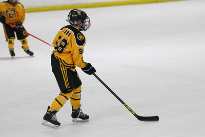 Sat-South-845-SuirtA-GoldenBears-JrDucks3IMG_2729