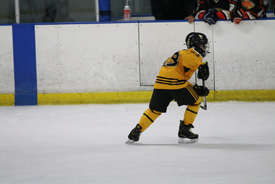Sat-South-845-SuirtA-GoldenBears-JrDucks3IMG_2757