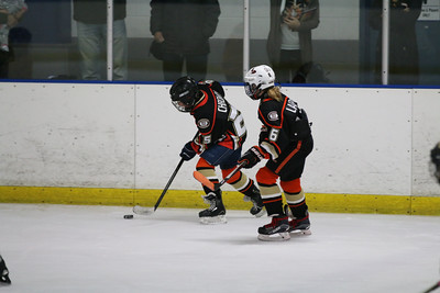 Sat-South-845-SuirtA-GoldenBears-JrDucks3IMG_2745
