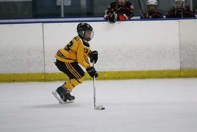 Sat-South-845-SuirtA-GoldenBears-JrDucks3IMG_2728