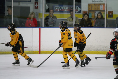 Sat-South-845-SuirtA-GoldenBears-JrDucks3IMG_2743