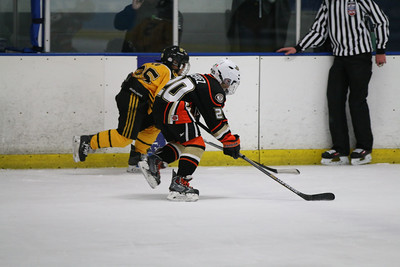 Sat-South-845-SuirtA-GoldenBears-JrDucks3IMG_2758