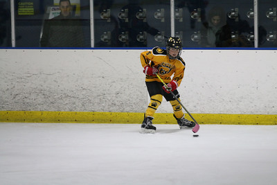 Sat-South-845-SuirtA-GoldenBears-JrDucks3IMG_2759