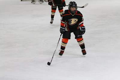 Sat-South-845-SuirtA-GoldenBears-JrDucks3IMG_2724