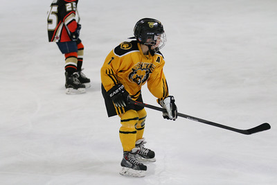 Sat-South-845-SuirtA-GoldenBears-JrDucks3IMG_2736