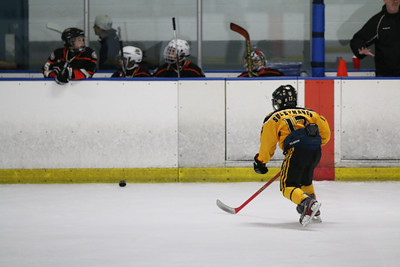 Sat-South-845-SuirtA-GoldenBears-JrDucks3IMG_2731