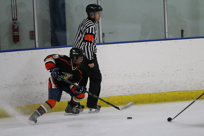 Sat-South-845-SuirtA-GoldenBears-JrDucks3IMG_2746