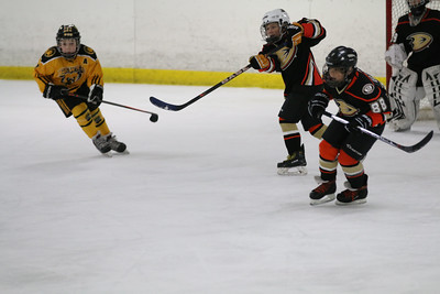 Sat-South-845-SuirtA-GoldenBears-JrDucks3IMG_2735