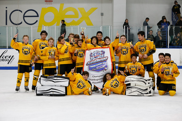 Sun-North-1130-PeeweeAAA-Championship-Bears-JrKings-9318