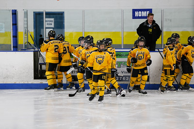 Sun-North-1130-PeeweeAAA-Championship-Bears-JrKings-9032