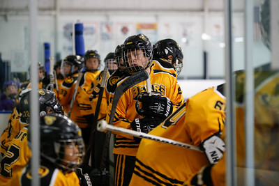 Sun-North-1130-PeeweeAAA-Championship-Bears-JrKings-9027