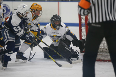 Sun-North-115-PeeweeA-Championship-Oilers2-JrFlyers-9343