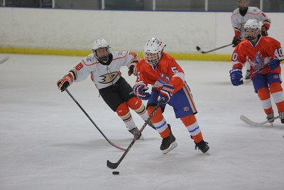 Sun-South-1015-PeeweeAAA-Consolation-JrGulls-JrDucks-4747