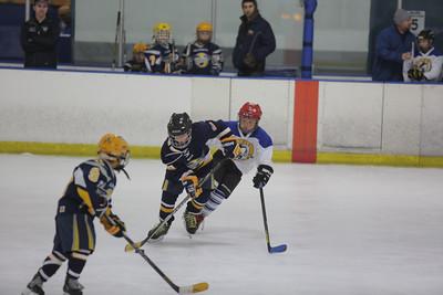 Sun-South-130-SquirtB-Championship-Flyers-Penguins-5494
