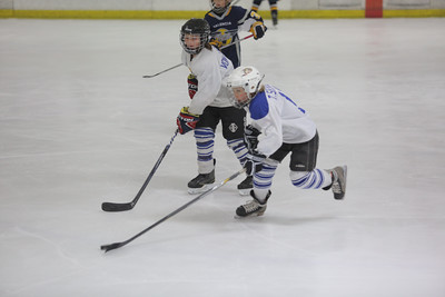 Sun-South-130-SquirtB-Championship-Flyers-Penguins-5474