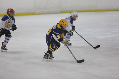 Sun-South-130-SquirtB-Championship-Flyers-Penguins-5471