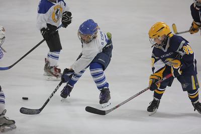 Sun-South-130-SquirtB-Championship-Flyers-Penguins-5492