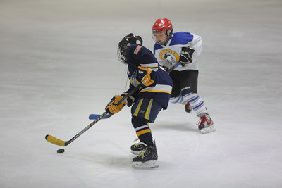 Sun-South-130-SquirtB-Championship-Flyers-Penguins-5502