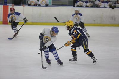 Sun-South-130-SquirtB-Championship-Flyers-Penguins-5504