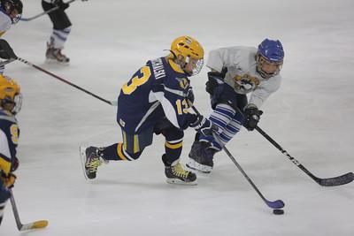 Sun-South-130-SquirtB-Championship-Flyers-Penguins-5476