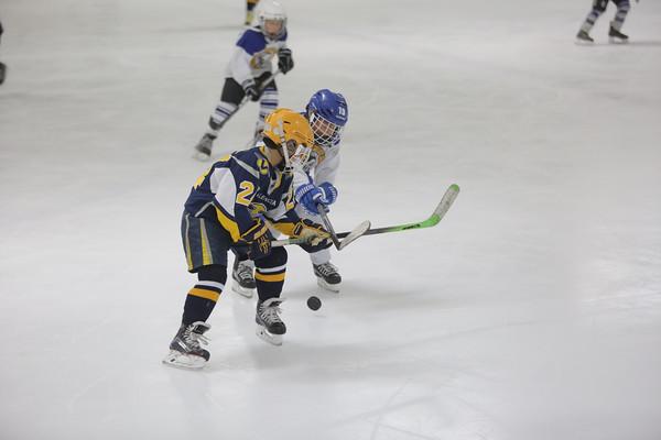 Sun-South-130-SquirtB-Championship-Flyers-Penguins-5485