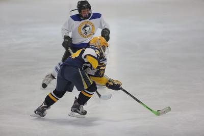 Sun-South-130-SquirtB-Championship-Flyers-Penguins-5468