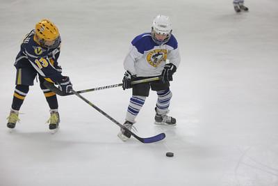 Sun-South-130-SquirtB-Championship-Flyers-Penguins-5490