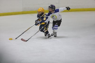 Sun-South-130-SquirtB-Championship-Flyers-Penguins-5481