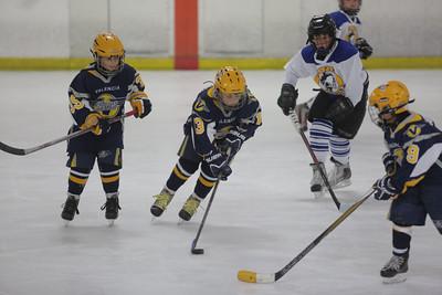Sun-South-130-SquirtB-Championship-Flyers-Penguins-5475