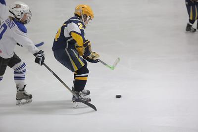 Sun-South-130-SquirtB-Championship-Flyers-Penguins-5467