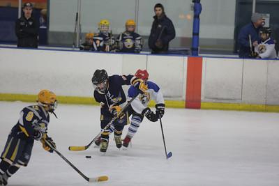 Sun-South-130-SquirtB-Championship-Flyers-Penguins-5493