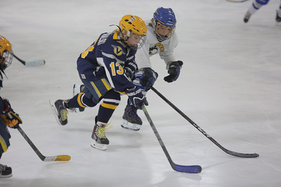 Sun-South-130-SquirtB-Championship-Flyers-Penguins-5477