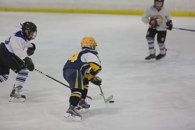 Sun-South-130-SquirtB-Championship-Flyers-Penguins-5469