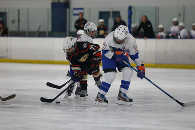 Wed-South-515-SquirtA-JrGulls2-JrDucks2-6486