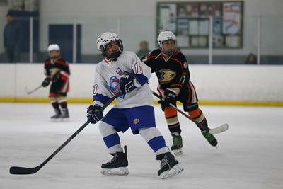 Wed-South-515-SquirtA-JrGulls2-JrDucks2-6505