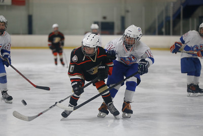 Wed-South-515-SquirtA-JrGulls2-JrDucks2-6489