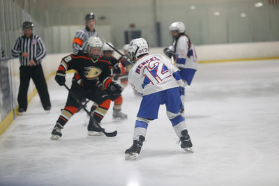 Wed-South-515-SquirtA-JrGulls2-JrDucks2-6492
