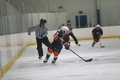 Wed-South-515-SquirtA-JrGulls2-JrDucks2-6490