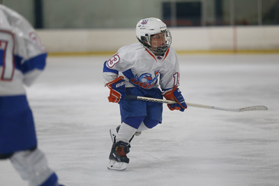 Wed-South-515-SquirtA-JrGulls2-JrDucks2-6508