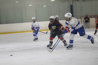 Wed-South-515-SquirtA-JrGulls2-JrDucks2-6509