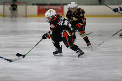 Wed-South-515-SquirtA-JrGulls2-JrDucks2-6481