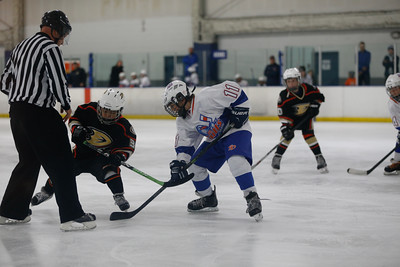 Wed-South-515-SquirtA-JrGulls2-JrDucks2-6499
