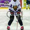 "Braehead Clan defeat Dundee Stars 4-1 at Braehead Arena and clinch the 2016-17 Gardiner Conference  title on ,25 February 2017, Picture: Al Goold ( <a href=""http://www.algooldphoto.com"">http://www.algooldphoto.com</a>)"