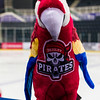 "Paisley Pirates defeat N Ayr Wild in the 2nd leg of the SNL Play Off 1/4 final and proceed to the Finals weekend in Fife<br /> on   ,26 March , Picture: Al Goold ( <a href=""http://www.algooldphoto.com"">http://www.algooldphoto.com</a>)"