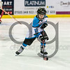 "Paisley Pirates defeat North Ayr Wild 8-1  on  ,2 October 2016, Picture: Al Goold ( <a href=""http://www.algooldphoto.com"">http://www.algooldphoto.com</a>)"
