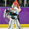 "Paisley Pirates defeat Kilmarnock Thunder 20--0 in SNL League action at Braehead Arena on   ,3 March , Picture: Al Goold ( <a href=""http://www.algooldphoto.com"">http://www.algooldphoto.com</a>)"