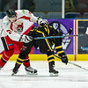 "Paisley Pirates defeat the Dundee Tigers 5-2 at Braehead Arena on  ,4 November 2018, Picture: Al Goold ( <a href=""http://www.algooldphoto.com"">http://www.algooldphoto.com</a>)"