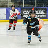 """Paisley Pirates defeat Kirkcaldy Kestrels 8-2 in the second leg of their Scottish Cup tie, and after winning 12-4 on aggregate, progress to the next round, at Braehead Arena on 8 December , Picture: Al Goold ( <a href=""""http://www.algooldphoto.com"""">http://www.algooldphoto.com</a>)"""